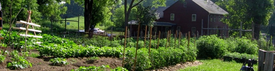 Judea Garden with Camp House